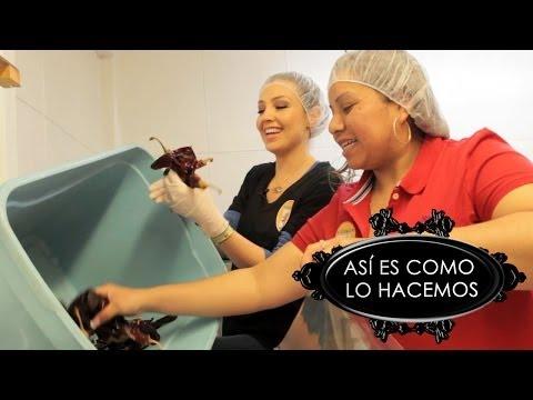 Thalia Empaca Chiles Guajillos  | Así Es Como Lo Hacemos