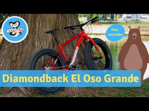 Fat Bikes are Amazing Fun! Diamondback El Oso Review
