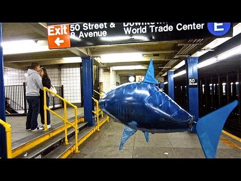 the flying shark in NYC by Casey Neistat
