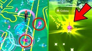 une journée AVEC QUE DES SHINY.. (Pokemon Go)