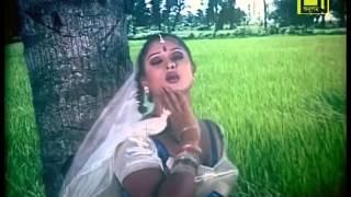 Agun,আমি বারুদ তুমি   ময়ূরী, হেলাল  Jahangirjr1