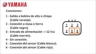 Conexión del CDI de Yamaha Crypton 105 T (de 6 cables)