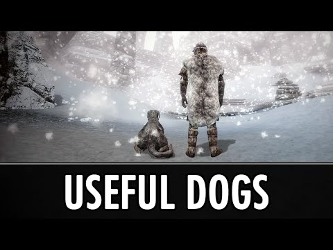 Skyrim Mods: Useful Dogs + ICBINE3