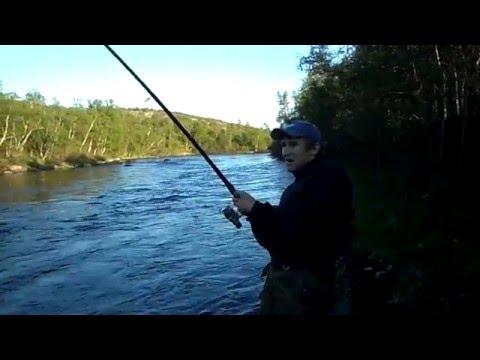 рыбалка на семгу на титовке