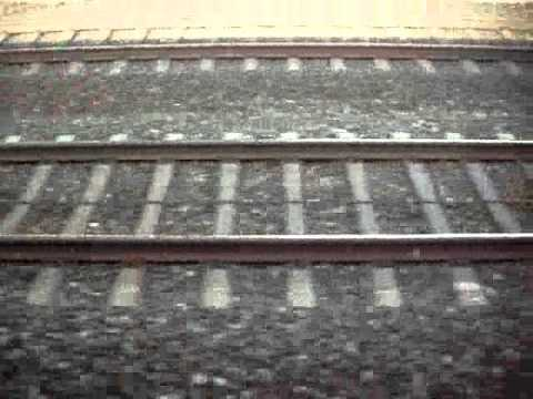 Train - Track .  Music from Wet Dog