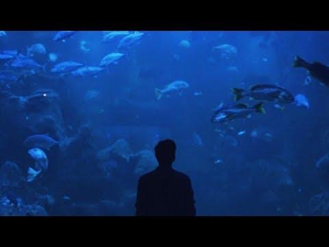 Ardhito Pramono feat. Joan Elizabeth - Perlahan Menghilang