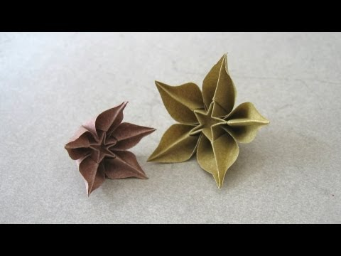 Origami Instructions: