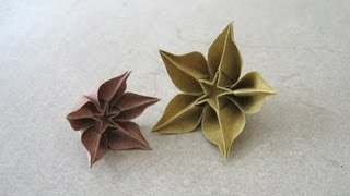 Origami Instructions: Carambola (carmen Sprung)