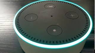 Alexa -  Tell me a Haiku