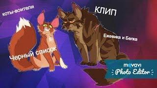 Коты-воители Ежевика и Белка--Черный список