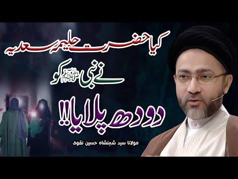 Kaya Hazrat Haleema Sadia Ny Nabi (ﷺ) Ko Dudh Pilaya | Maulana Shahenshah Hussain Naqvi | 4K