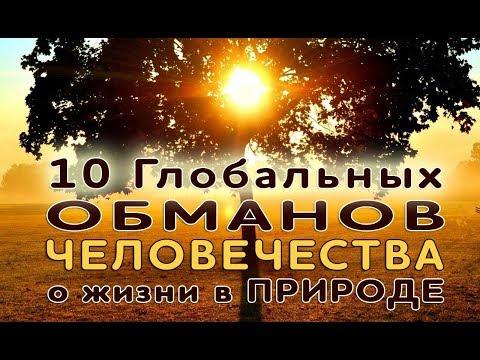 10 ГЛАВНЫХ ОБМАНОВ ЧЕЛОВЕЧЕСТВА О ЖИЗНИ В ПРИРОДЕ