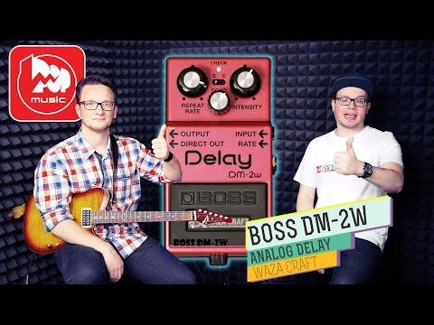 BOSS DM-2W - аналоговый Delay. Гитарный видеоблог #3