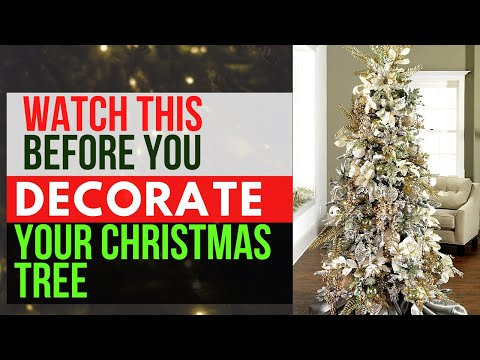 Expert Tips on Trimming the Tree