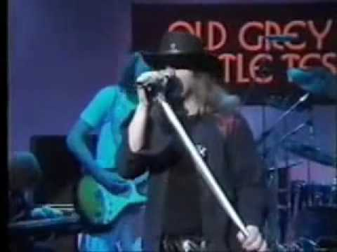 Lynyrd Skynyrd - I Got The Same Old Blues