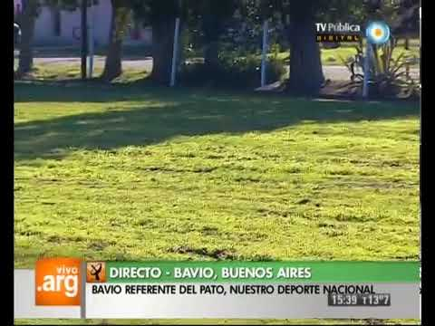 Vivo en Arg - Bs.As. - Bavio - Deporte (2 de 2) - 16-05-13