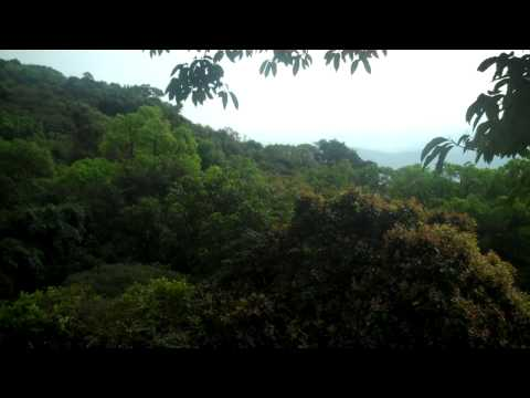 Mulliahna Giri sight seeing video Chikmagalur,Karnataka by G N Viswanath