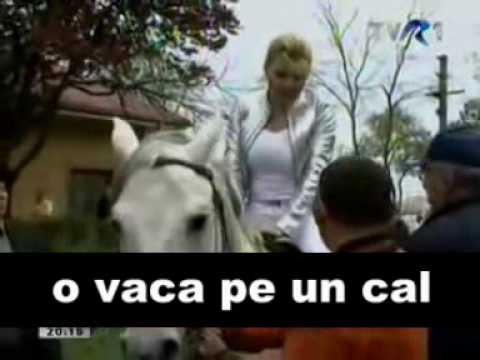 Elena Udrea - Sex Cu Animale Zoofil: O Vaca Pe Un Cal - Http:  basarica.wordpress  video