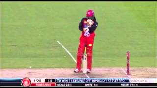 Chris Gayle 12 Ball Fifty