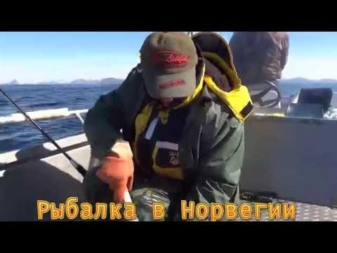 Треска 15 кг.Рыбалка в Норвегии!