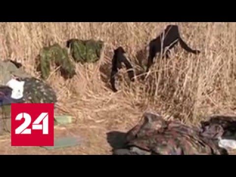Аваков сообщил о 500 самоубийствах вернувшихся из Донбасса