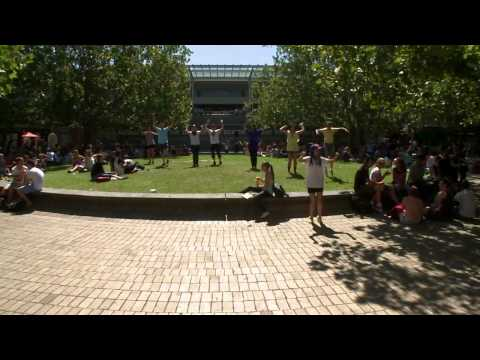 Flash Mob fever hits La Trobe University's Indian Exchange Week