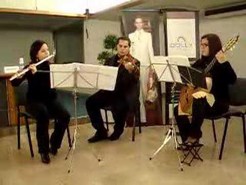 www.galatina.it G.Greco, D. Greco, C. Caiffa Tango Piazzolla