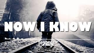 Sad Emotional Piano Rap Beat Deep Storytelling Hip Hop Instrumental ''Now I Know'' | ShonzyBeatz.com