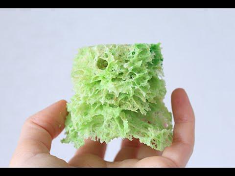 Мох бисквитный / Sponge moss