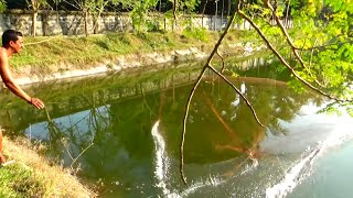 Net Fishing | Best Cast Net Fishing Videos | Catching Huge Fish In Village Pond ( Part 2 )