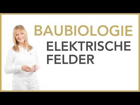 Elektrische Felder - Du wirst nicht glauben, was passiert! | Dr. Petra Bracht | Gesundheit, Wissen