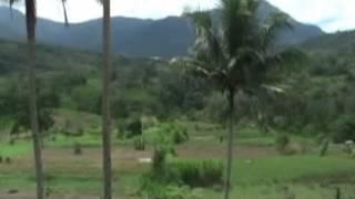 Download Lagu Lagu Pakpak Permaen Pertunanden Gratis STAFABAND