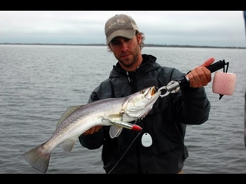 Topwater trophy speckled trout on Calcasieu Lake
