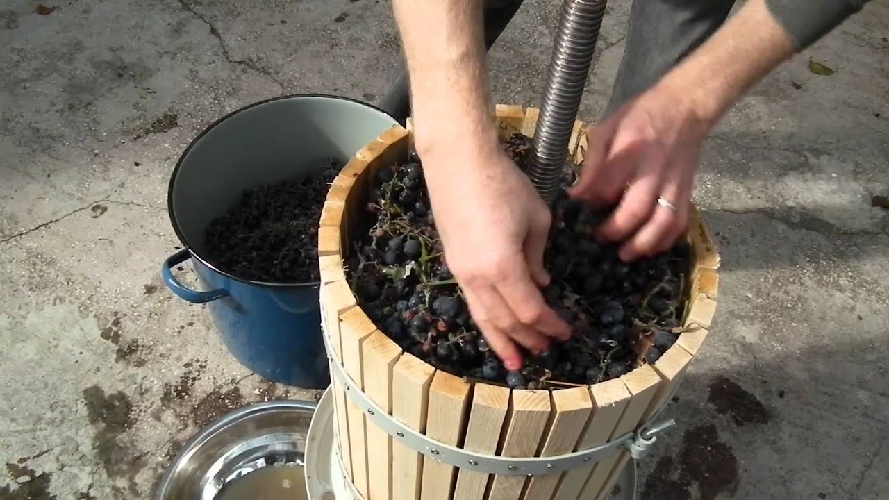 How to make grape juice with a traditional wine press for Home wine press