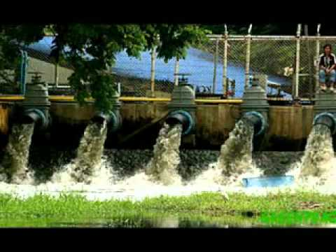 Causes Of Water Pollution video