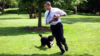 Những khoảnh khắc thú vị nhất của Tổng thống Obama