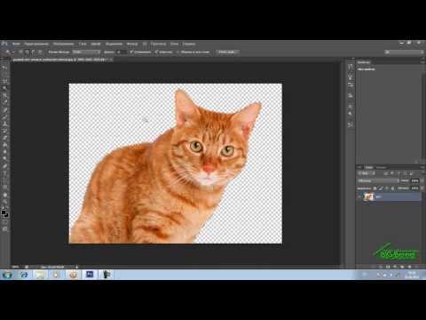 Как фото сделать с прозрачным фоном