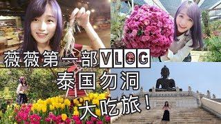 薇薇第一部 Vlog!!泰国勿洞大吃旅!!!