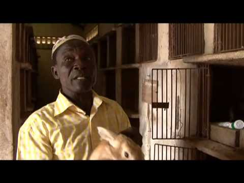 AFRICA REPORT Season5 Episode4/4 - Helvetas assists the cotton producers