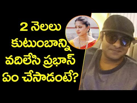 Unknown Facts About Prabhas | Radhakrishnan | Sujeeth | Shraddha Kapoor | YOYO Cine Talkies