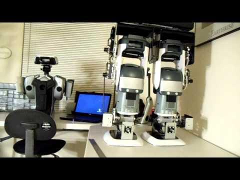 Homemade Humanoid robot project