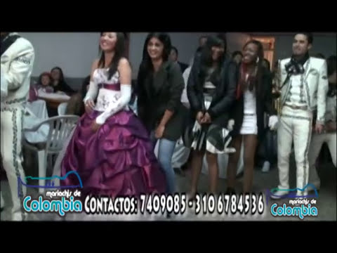 Mariachis de Colombia Show de Zapateo