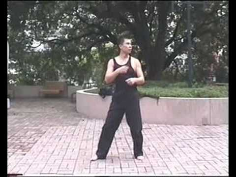 Jeet Kune Do punch (JKD) Image 1