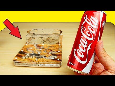 Реакция Муравьев на Чай, Кетчуп и Кока-Колу! Я удивлен! 😲 Что если? Alex Boyko