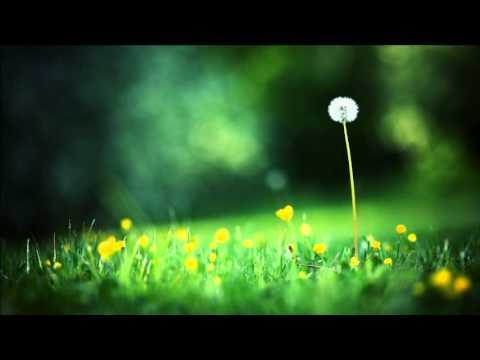Clip video Sir toby - The Intouchables | Soundtrack meets dubstep - Musique Gratuite Muzikoo