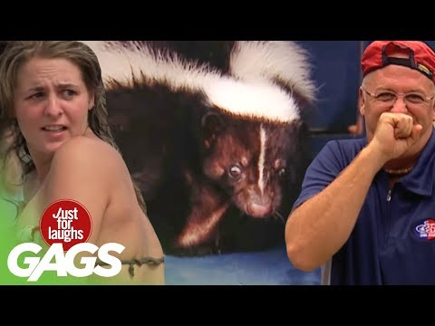 Best of Just For Laughs Gags – Best Skunk Pranks