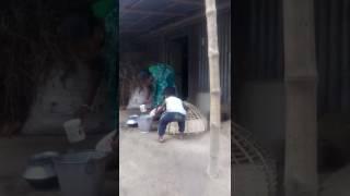 Bangla funy video