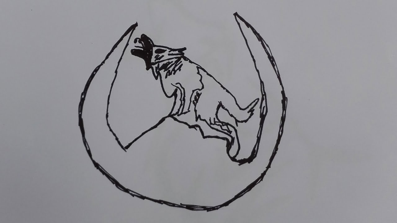 Howling wolf drawing easy