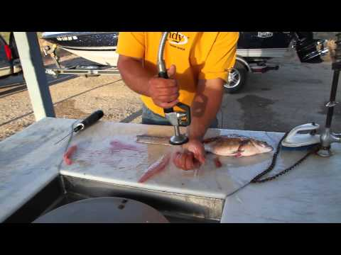 Best Way To Fillet White Bass
