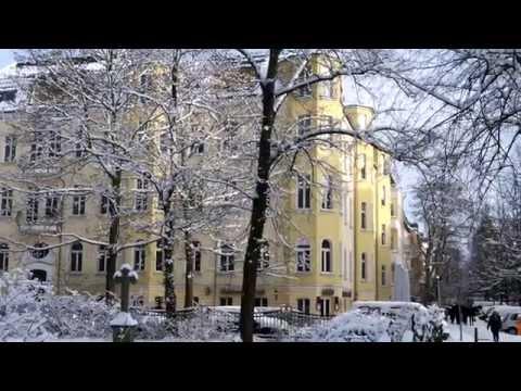 WINTER IN BERLIN - Bürgerpark Pankow 2014